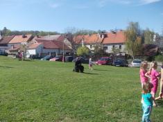 Pálená čarodějnic, kácení májky 2012