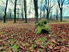 Příroda a památky města Mašťova. Autor: Nela Rauscherová